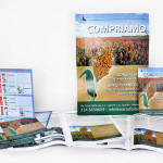 Linea_coordinata_campagna_pubblicitaria