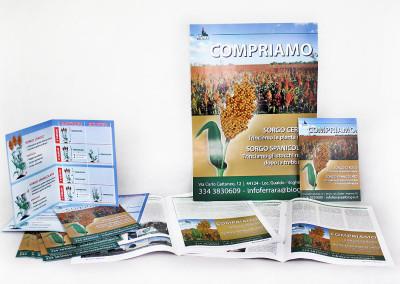 Progetti: Gruppo Biogas