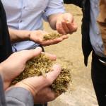 Open-day_partnership_biomassa