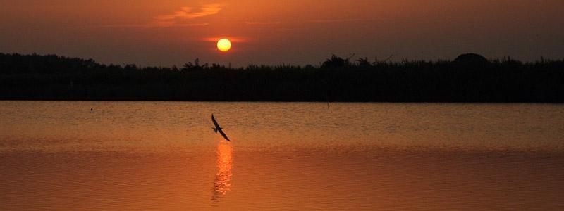 Lido di Volano: dove il turismo naturalistico domina quello balneare