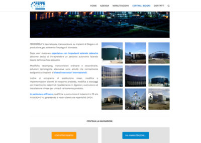 Sito web Ferri Group